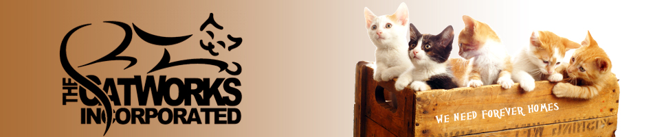Return to The CatWorks, Inc Home Page